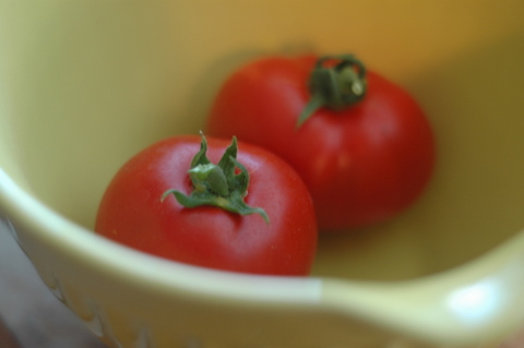first-tomatoes.jpg