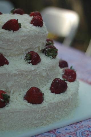 jillandgavins-wedding-cake-2.jpg