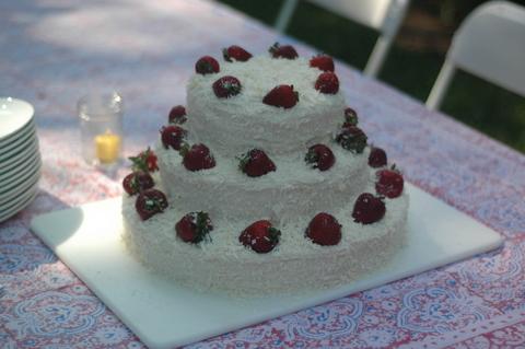 jillandgavins-wedding-cake-3.jpg